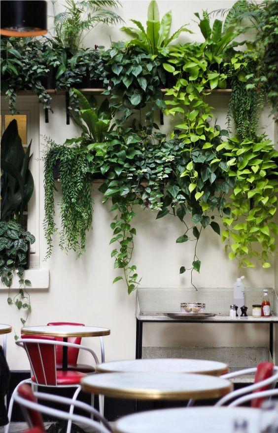 balkon-inrichten-hangplanten