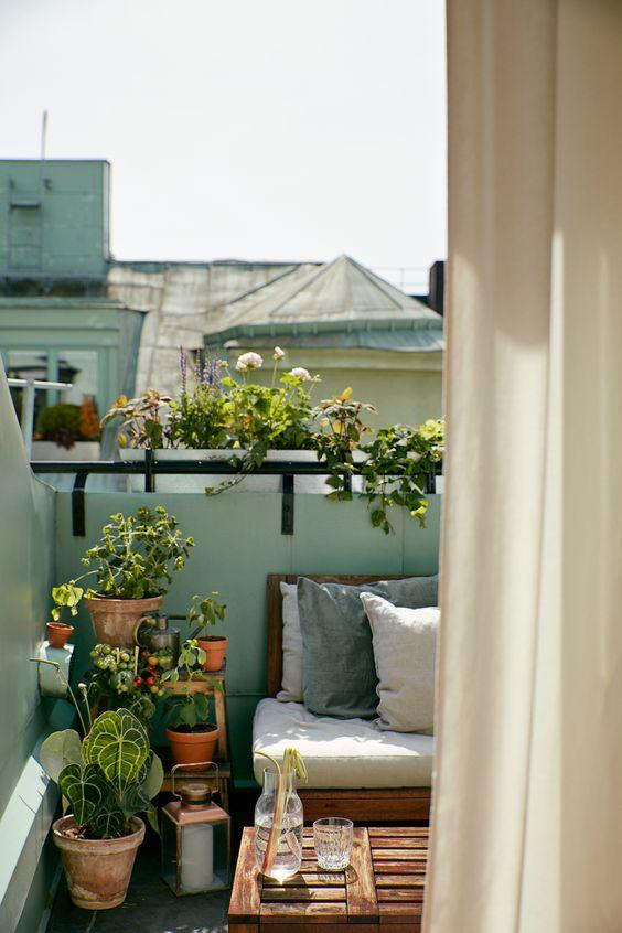 balkon-inrichten-plant