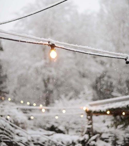 Wintertuin - Lichtjes
