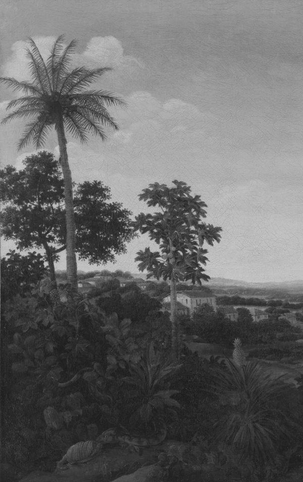 botanische palm behang zwart wit