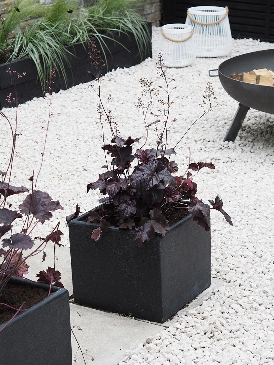 Budget tuin ideeën plantenbakken