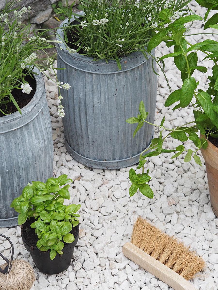 Budget tuin ideeën plantenpotten