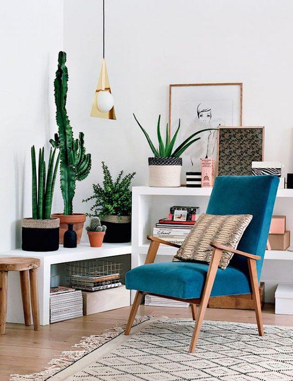 cactus woonkamer