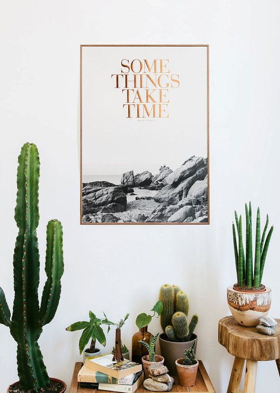 cactussen decoratie
