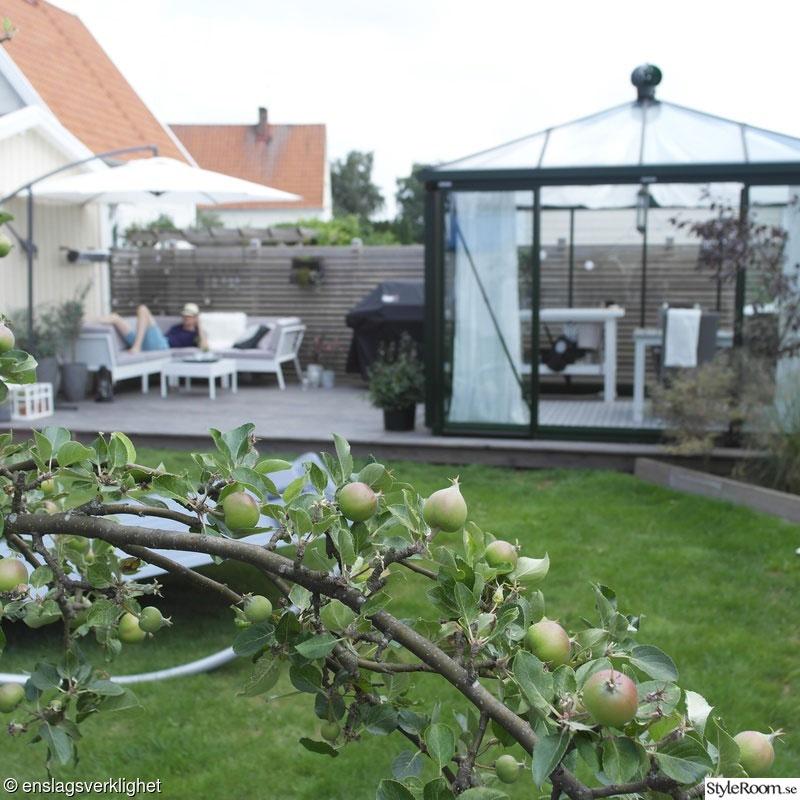 De mooie tuin van Eva!