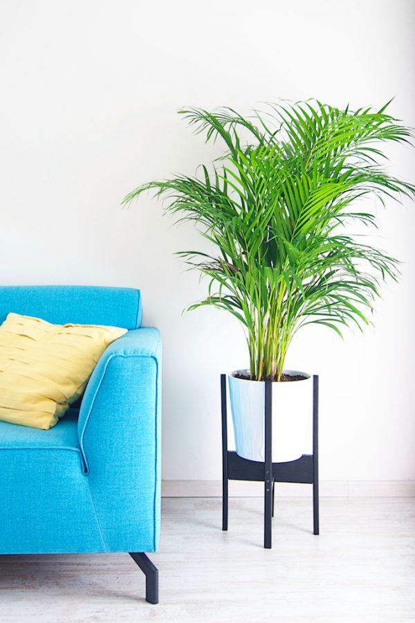 diy plantenstandaard