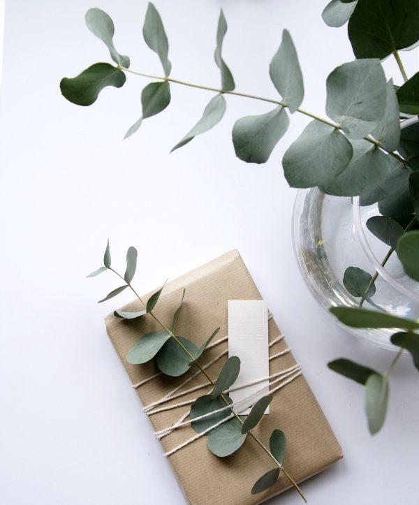 eucalyptus inpakken