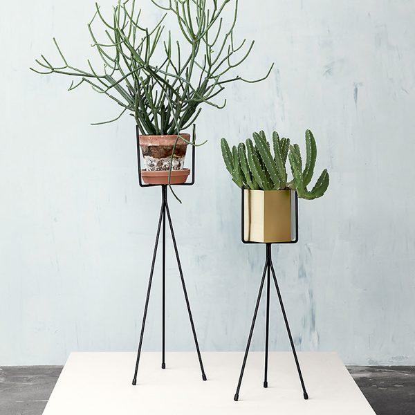 ferm living planten wonenmetlef