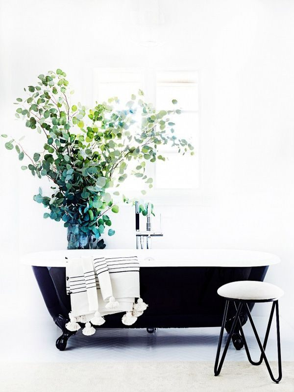 Planten in de badkamer - THESTYLEBOX