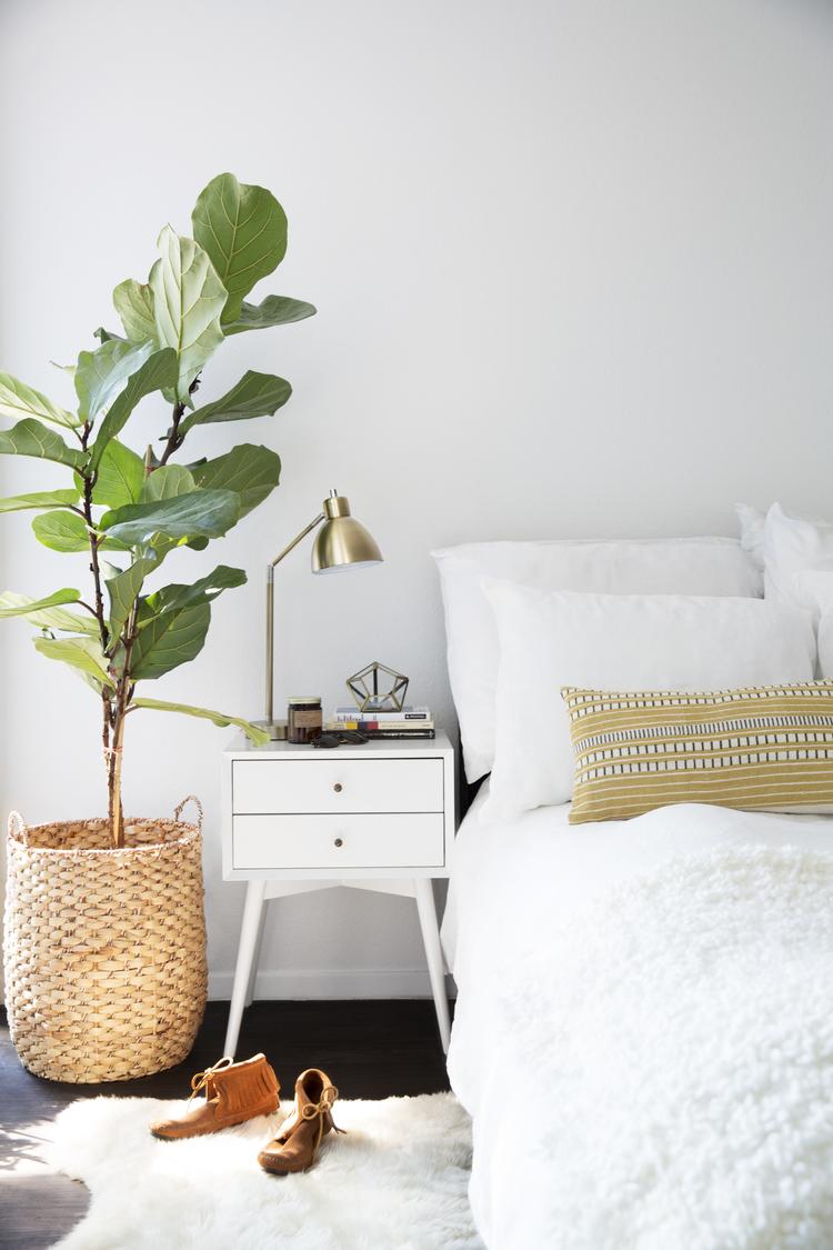 Plant in de slaapkamer thestylebox - Beeld decoratie slaapkamer ...