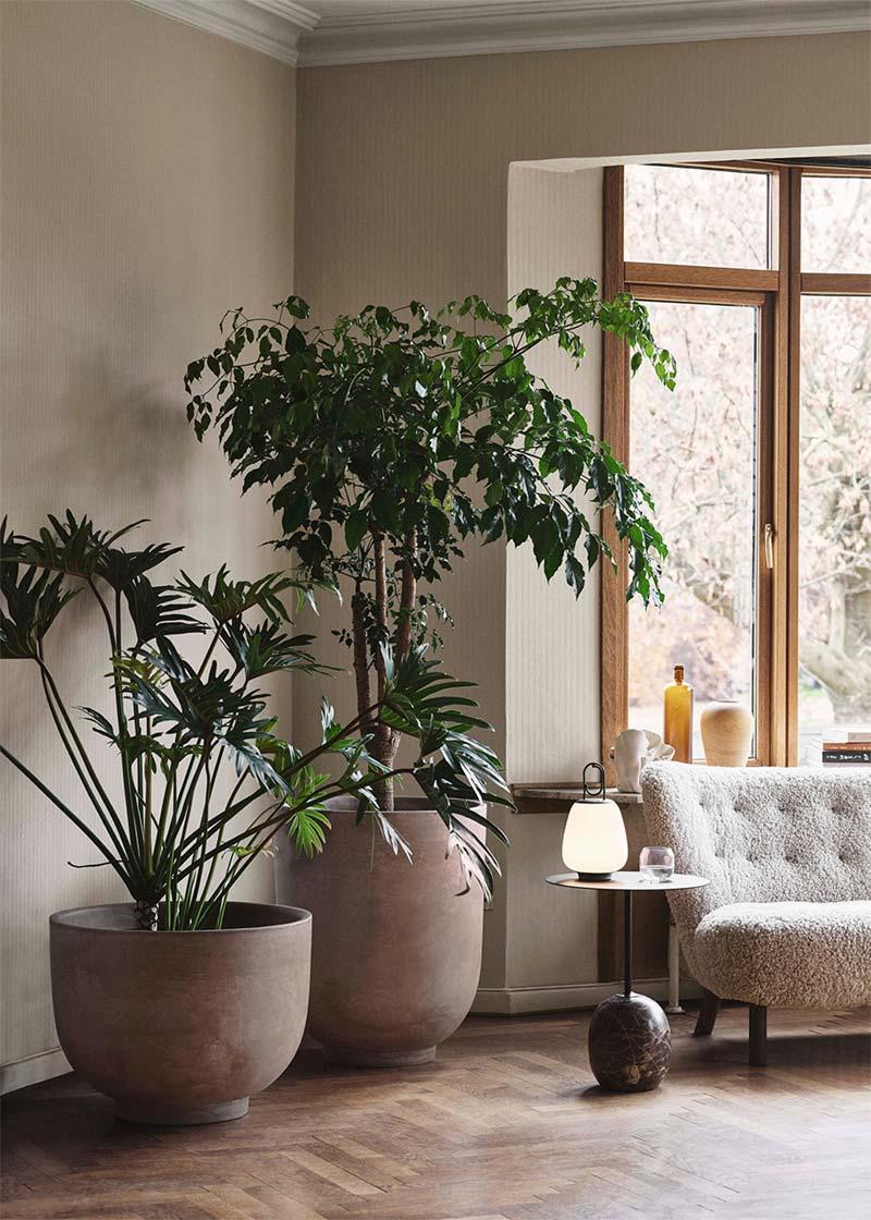 huis koel houden planten