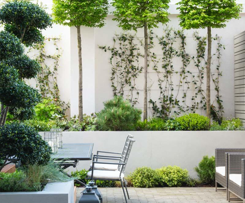 intieme moderne tuin beplanting
