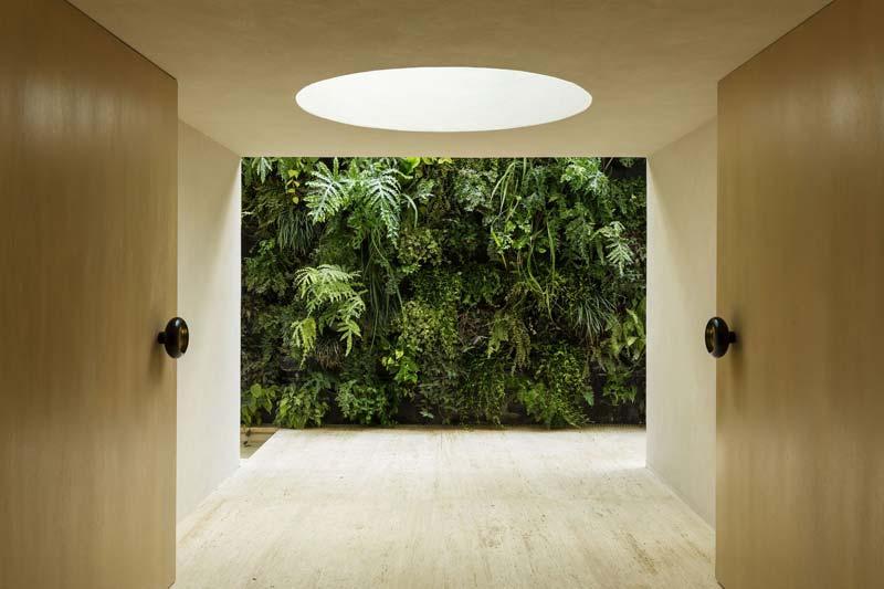 Levende groene muur