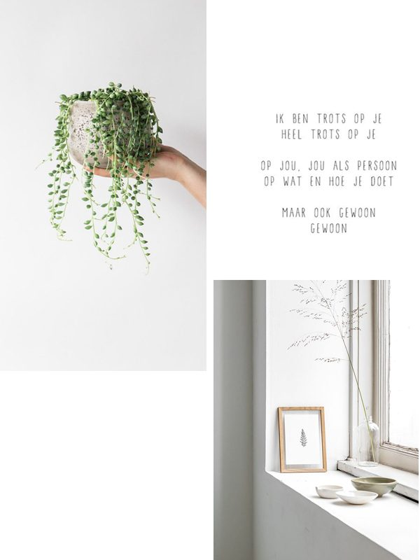 moodboard thestylebox wit groen
