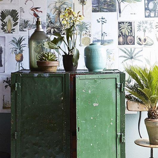 posters planten behang