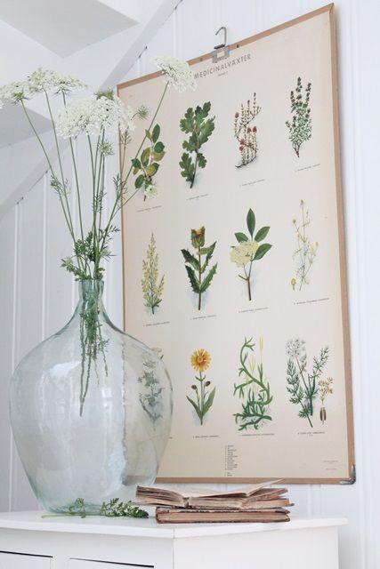 vintage planten poster