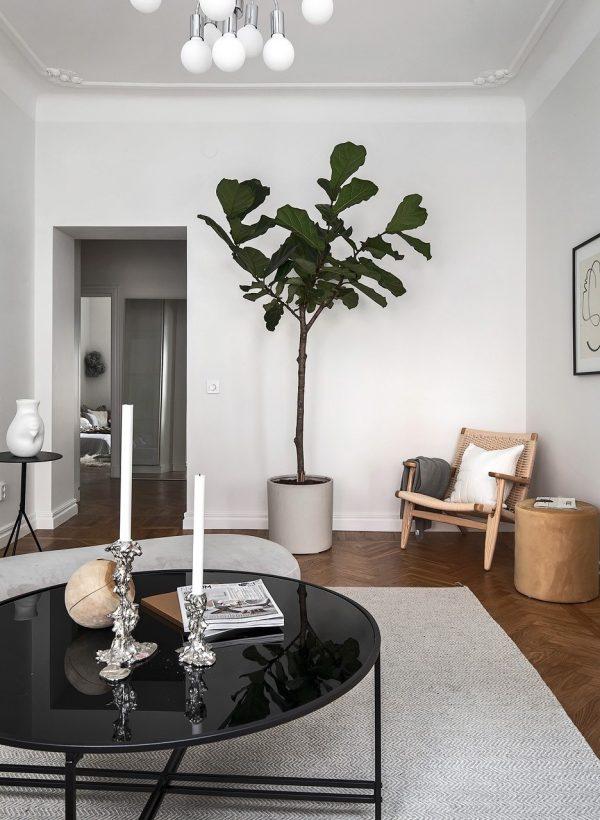 woonkamer ideeën boom in huis