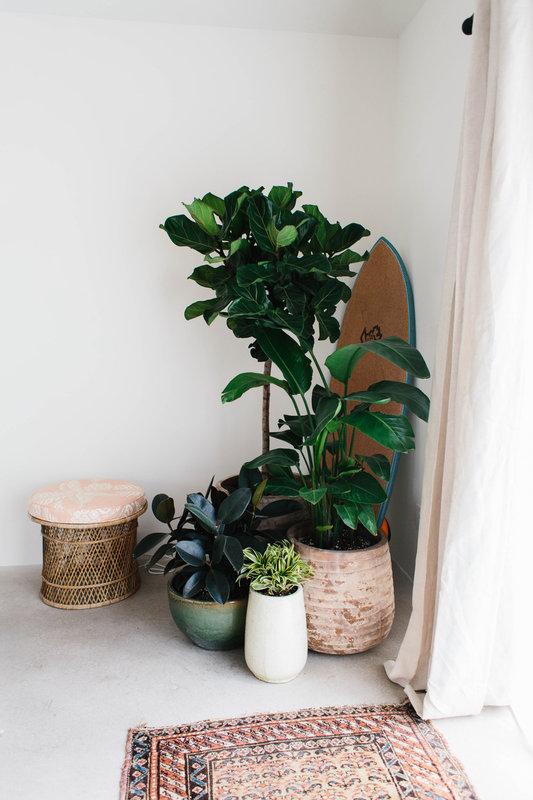 woonkamer ideeën planten
