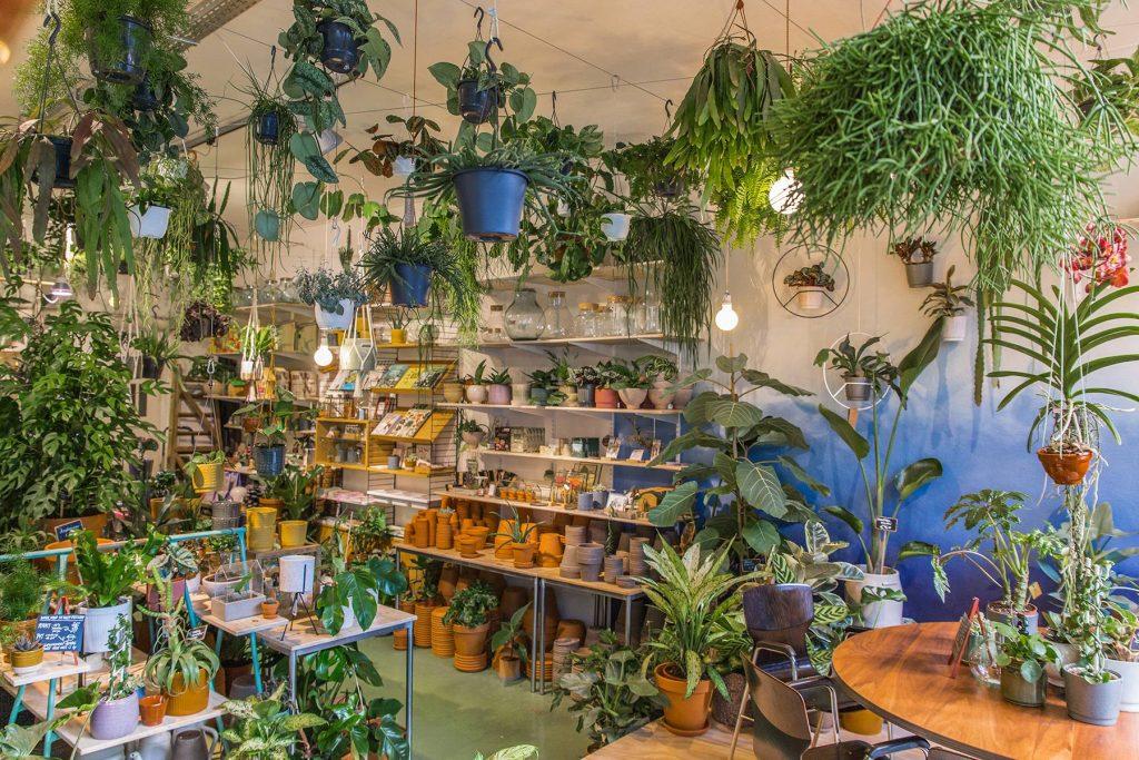 Woonwinkel Amsterdam Wildernis