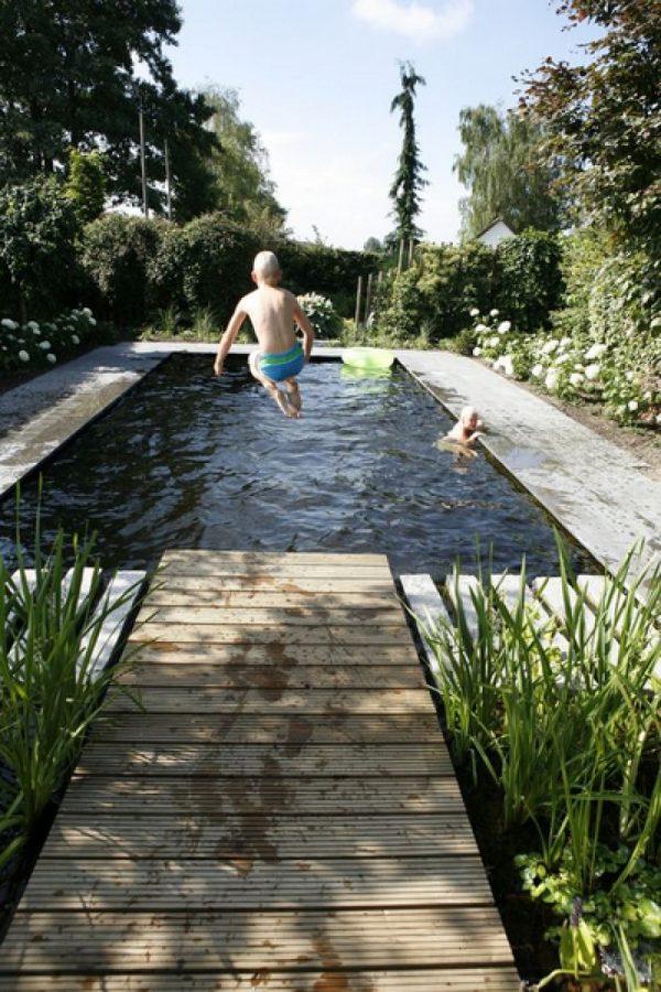 zwemvijver tuin